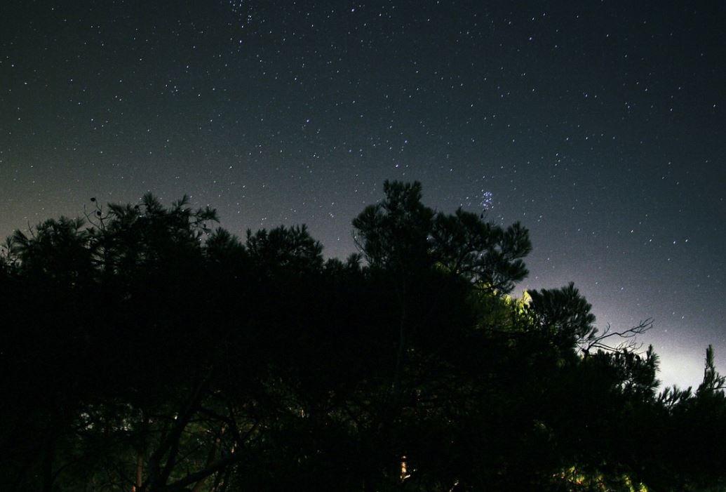 29 november sterrenbeeld