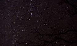 Horoscoop: 30 november sterrenbeeld