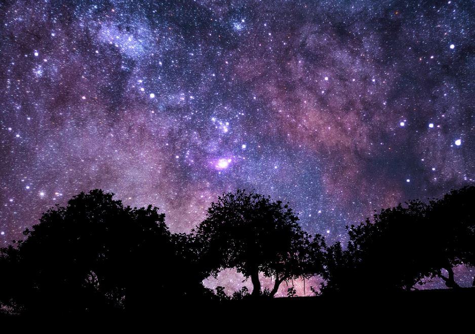 2 december sterrenbeeld