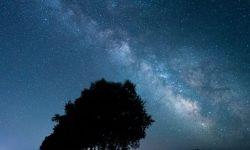 Horoscoop: 4 december sterrenbeeld
