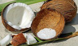 Waarom is kokos gezond? Lees hier de 22 voordelen