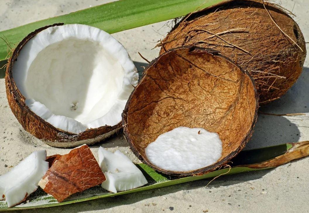 kokos gezond