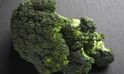 Is broccoli gezond? Lees hier de 23 voordelen