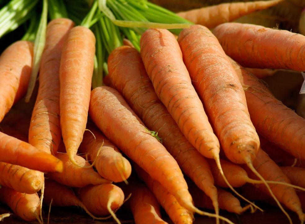 Zijn wortels gezond