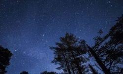 22 december sterrenbeeld: Wat is mijn persoonlijkheid?