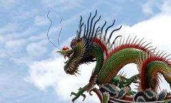 Horoscoop: Chinees sterrenbeeld 1988